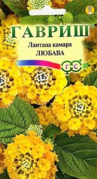 Лантана Камара Любава