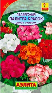 Пеларгония Палитра Красок