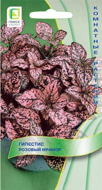Гипестис Розовый Мрамор
