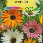 Арктотис Арлекин