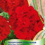 Пеларгония Люстра Скарлет
